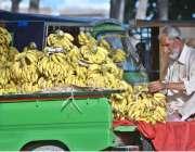 راولپنڈی: ایک معمر محنت کش گاہکوں کو متوجہ کرنے کے لیے کیلے سجا رہا ..