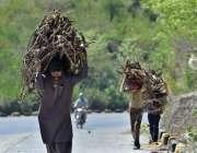 اسلام آباد: شہری اپنے بچو ں کے ہمراہ گھر کا چولہا جلانے کے لیے خشک لکڑیاں ..