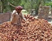 فیصل آباد: مزدورں کے عالمی دن کے موقع پر ایک مزدور روڑی کوٹ رہا ہے۔
