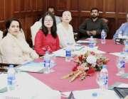 لاہور: سینئر وزیر پنجاب عبدالعلیم خان کی زیر صدارت چینی وفد سے مختلف ..