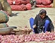 ملتان: سبزی منڈی میں محنت کش خاتون پیاز چھانٹی کررہی ہے۔