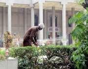 لاہور: چلڈرن کمپلیکس میں مالی پودوں کی بے ترتیب شاخوں کو کاٹ رہا ہے۔