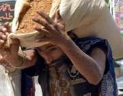حیدر آباد: مزدوروں کے عالمی دن کے موقع پر ایک محنت کش اپنے کندھوں پر ..