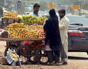 راولپنڈی: خاتون ریڑھی بان سے پھل خرید رہی ہے۔