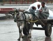 پشاور: گدھا ریڑھی پر بیٹھے افراد بارش سے بچنے کے لیے پلاسٹک کی شیٹ تانے ..