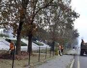 اسلام آباد: سی ڈی اے اہلکار گرین بیلٹ کی صفائی ستھرائی میں مصرو ف ہیں۔