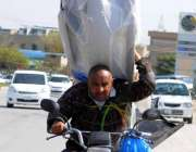 اسلام آباد: موٹر سائیکل سوار خطرناک انداز سے سامان اٹھائے پولیس لائن ..
