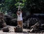 اسلام آباد: محنت کش گودام میں لکری کاٹ رہا ہے۔