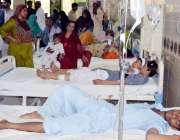 لاڑکانہ: لاڑکانہ میں روڈ حادثے میں زخی مرد، خواتین اور بچے ہسپتال میں ..