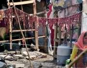 راولپنڈی: خانہ بدوش خواتین نے گوشت کو محفوظ کرنے کے لیے دھوپ میں لٹکا ..