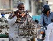 اسلام آباد: محنت کش پرندے اٹھائے فروخت کررہاہے۔