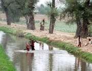 ملتان: خواتین چولہا جلانے کے لیے خشک لکڑیاں اٹھائے ندی کراس کر رہی ہیں۔
