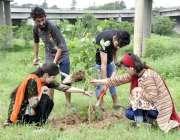 اسلام آباد: مختلف یونیورسٹی کے طلبہ و طالبات شجر کاری مہم کے دوران پودے ..