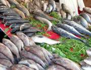 راولپنڈی: دکاندار گاہکوں کو متوجہ کرنے کے لیے مچھلی فروخت کر رہاہے۔