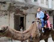 لاہور: بچے اونٹ کی سواری سے لطف اندوز ہو رہے ہیں۔