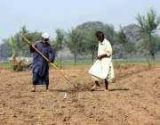 ملتان: کستان کھیت کو فصل کے لیے تیار کر رہے ہیں۔