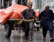 راولپنڈی: بارش سے بچنے کے لیے مزدور نے ریڑھے پر ترپال لگار کھا ہے۔