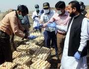 لاہور: صوبائی وزیر خوراک سمیع اللہ خراب انڈے تلف کر رہے ہیں۔