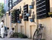 راولپنڈی: پی ایچ اے کے اہلکار موسمی پودے لگا رہے ہیں۔