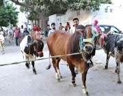 کراچی: عیدالاضحی کی آمد کے موقع پر شہری اپنے قربانی کے جانوروں کے ہمراہ ..