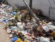 راولپنڈی: کشمیر روڈ گرلز کالج کے باہر کچرا نہ اٹھائے جانے سے گزرنے والی ..