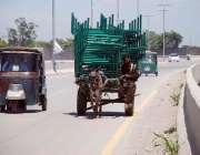 پشاور: محنت کش گدھا ریڑھی پر چارپائیاں رکھے مارکیٹ سپلائی کے لیے لیجا ..