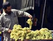 پشاور: ریڑھی بان گاہکوں کو متوجہ کرنے کے لیے انگور سجا رہا ہے۔