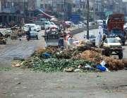 اسلام آباد: وفاقی دارالحکومت میں سبزی منڈی کے قریب کچرے کے ڈھیر کی وجہ ..