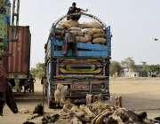 کراچی: پاکستان کوسٹ گارڈ کے ہاتھوں پکڑا گیا اسمگلنگ کا سامان ٹرک سے ..