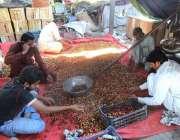 فیصل آباد: دکاندار فروٹ منڈی میں چیری چھانٹی کر رہے ہیں۔