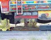 ملتان: ٹرک ڈرائیور ٹرک کے سائے میں سو رہا ہے۔
