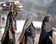 راولپنڈی: خانہ بدوش خواتین چولہا جلانے کے لیے خشک لکڑیاں اٹھائے جا ..