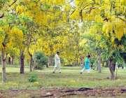 اسلام آباد: وفاقی دارالحکومت میں کھلے موسمی پھول دلکش منظر پیش کر رہے ..