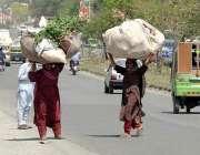 راولپنڈی: خانہ بدوش خواتین اپنے سروں پر گھاس اٹھائے لیجا رہی ہیں۔