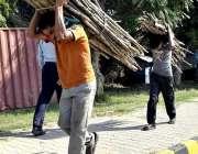 اسلام آباد: دو نوجوان گھریلو استعمال کے لیے خشک لکڑیاں اٹھائے جا رہے ..