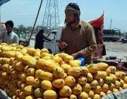 اسلام آباد: وفاقی دارالحکومت میں ریڑھی بان فروخت کے لیے آم سجائے بیٹھا ..