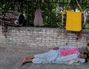 راولپنڈی: گرمی کی شدت میں اضافہ اور کام نہ ہونے کے سبب ایک ڈھولچی فٹ ..