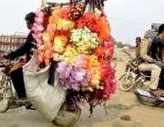 لاہور: مویشی منڈی میں ایک شحص قربانی کے جانوروں کی سجاوٹ کا سامان فروخت ..
