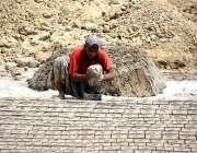 لاڑکانہ: مزدور بھٹہ پر اینٹیں بنا رہا ہے۔