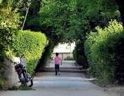 اسلام آباد: ایک بچہ درختوں کے سائے میں اپنی منزل کی جانب رواں ہے۔