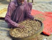 فیصل آباد: معمر محنت کش بھنے ہوئے چنوں کی صفائی ستھرائی کررہا ہے۔