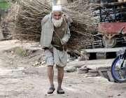 اسلام آباد: معمر شخص گیس کی بندش کے باعث لکڑی اٹھائے منزل کو رواں دواں ..