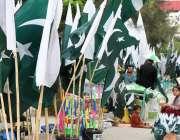 راولپنڈی: مری روڈ پر ایک محنت کش خاتون نے یوم آزادی کی مناسبت سے اشیاء ..