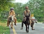 اسلام آباد: وفاقی دارالحکومت میں دو مزدور گدھوں پر سوار اپنی منزل کی ..