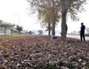 اسلام آباد: موسم بہار کی آمد پر سڑک کنارے درختوں سے گرے ہوئے پتے۔