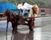لاہور: شہری میں ہونے والی بارش سے بچنے کے لیے کوچوان نے پلاسٹک اوڑھ ..