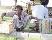 لاہور: ایک شخص گھر کا چولہا جلانے کے لیے کریٹ کی لکڑیاں اکٹھی کر رہا ..