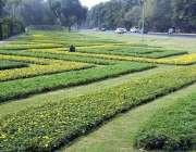 لاہور: پی ایچ اے اہلکار موسمی پودوں کی دیکھ بھال میں مصروف ہیں۔
