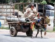 پشاور:معمر محنت کش گدھا ریڑھی پر سامان رکھے اپنے منزل کی جانب رواں ہے۔