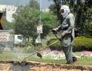 اسلام آباد: سی ڈی اے کا اہلکار گھاس کاٹنے میں مصروف ہے۔